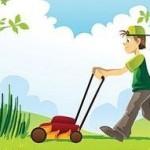 Kertész gyakornokot keresünk